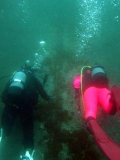 海洋実習ミニダイブ