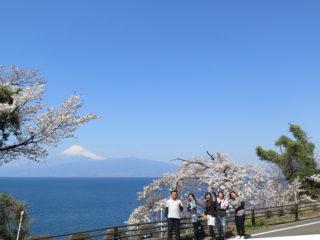 富士山も出たー