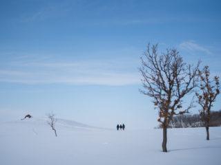 丘を目指す3人