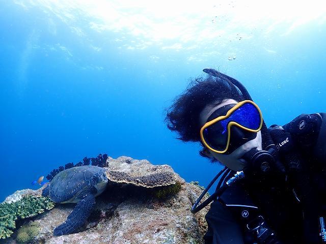 水中自撮り#アオウミガメ#柏島ダイビングツアー