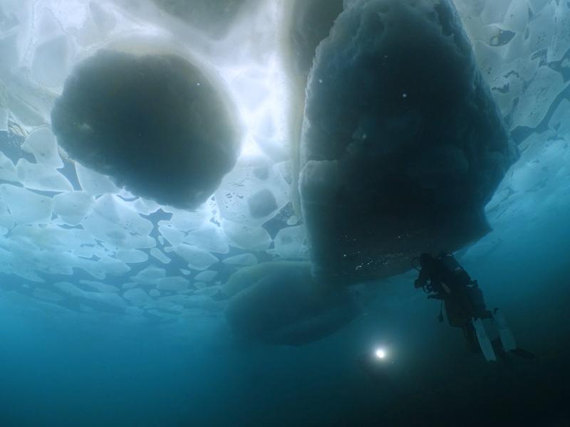 迫力の水中流氷