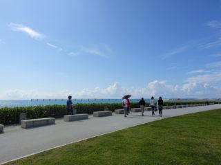 芝生と空と海