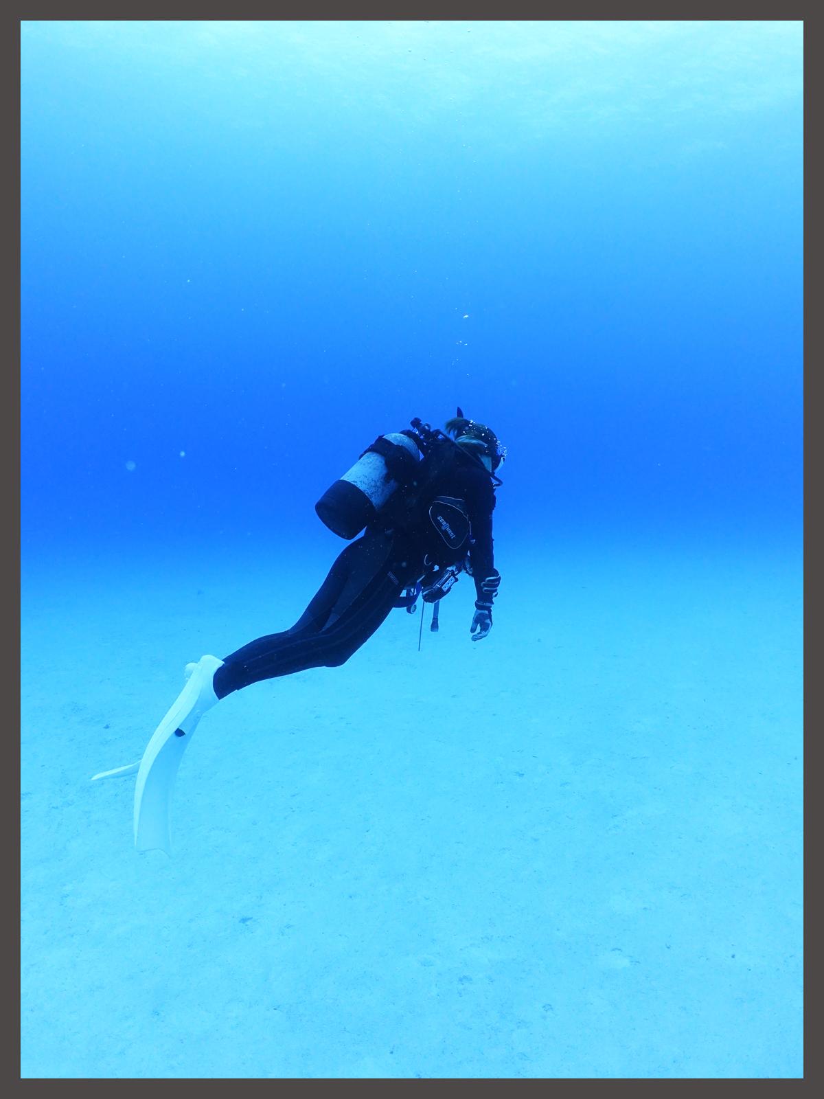 沖縄の海の下