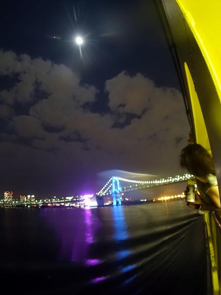 東京湾夜景@三宅島ドルフィンスイムツアー