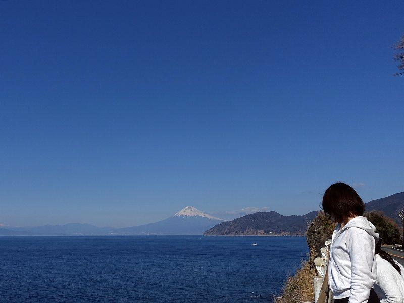 富士山@西伊豆の風景