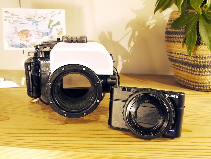 入門!水中カメラのセッティング方法