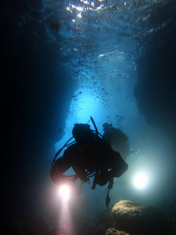 水中洞窟ポイント@東京ダイビングショップの日帰りツアー