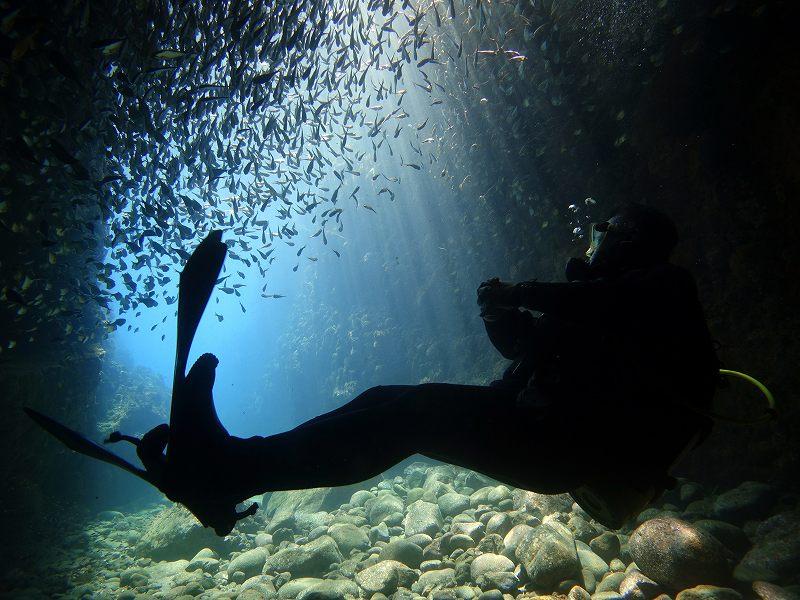 光のカーテン@田子水中洞窟ダイビング